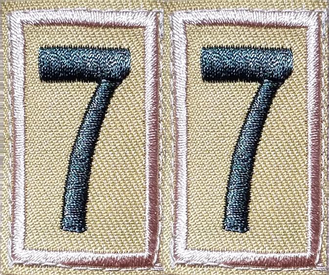 Troop 77